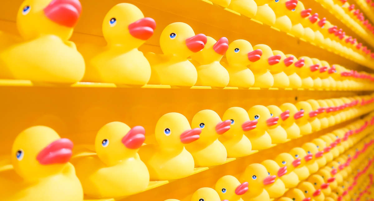 Hundreds of identical rubber ducks on shelves